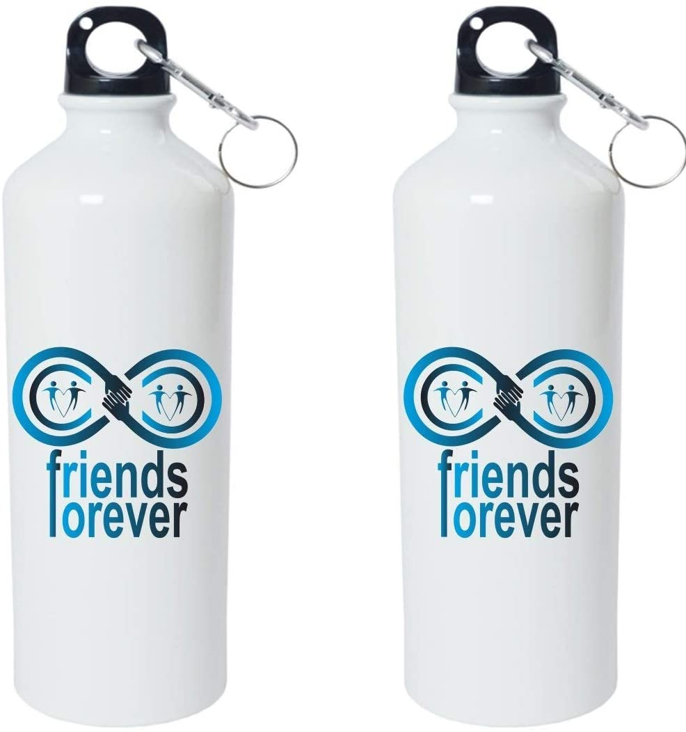 Crazy Sutra Classic Printed Water Bottle/Sipper - 600Ml (SchoolBottles-FriendsForever_W)